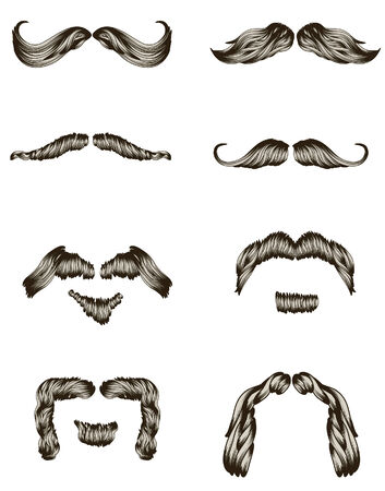 bigote: Colecci�n de barba dibujado de mano