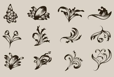 Hand getekend gedetailleerde floral ornament collectie