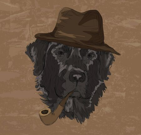 Vintage retro style color drawing of funny labrador retriever dog with hat and pipe  Иллюстрация