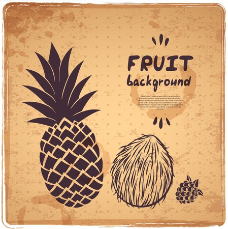 Blue Retro pineapple illustration  for your business Vector