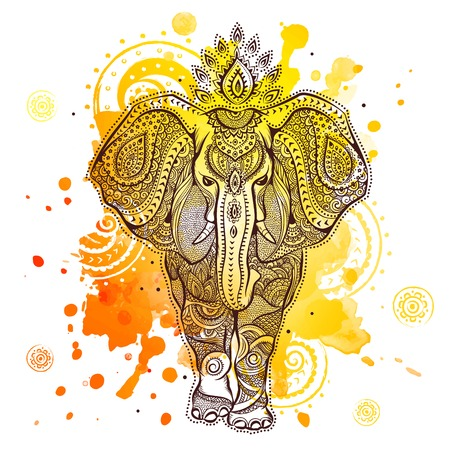 elephant illustration with watercolor splash