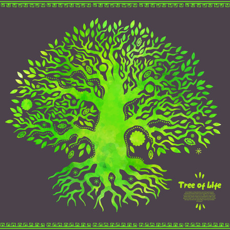 pine trees: Beautiful Unique vector watercolor ethnic tree of life Illustration
