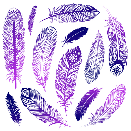 swelled: Set of  Ehnic feathers can be used as a greeting card or for your business