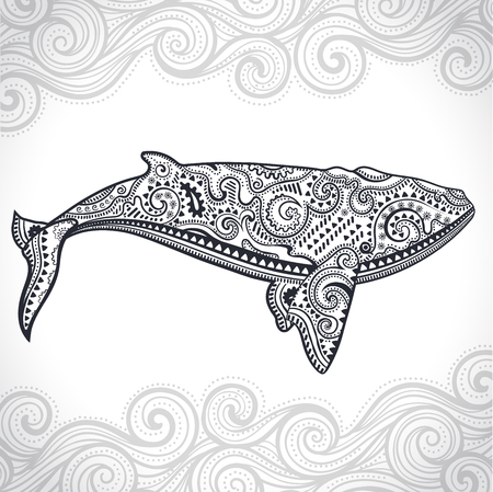 Vector wild Whale with tribal and ethnic ornaments Vectores