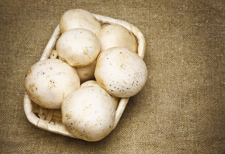 Delicious Mushrooms in Basket on Sacking background Stock Photo