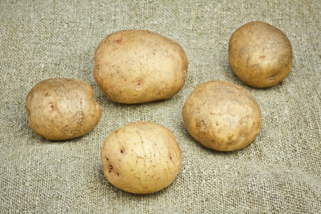 Unpeeled Potatoes on a Sacking background Stock Photo - 13167335