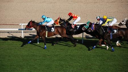 Ankara, Turkey - October 29, 2011 - October 29 Republic Day horse races at Hippodrome. Stock Photo - 13118880