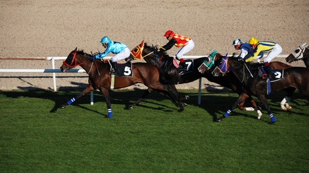 carreras de caballos: Ankara, Turqu�a - 29 de octubre de 2011 - 29 de octubre D�a de la Rep�blica las carreras de caballos en el Hip�dromo.