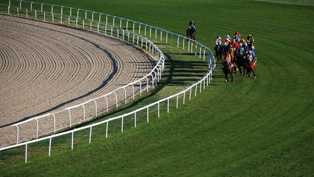 carreras de caballos: Ankara, Turqu�a - 29 de octubre de 2011 - 29 de octubre D�a de la Rep�blica carreras de caballos en el Hip�dromo.