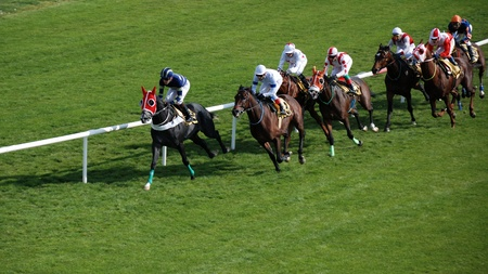 caballos corriendo: Los caballos y los jinetes durante una carrera.