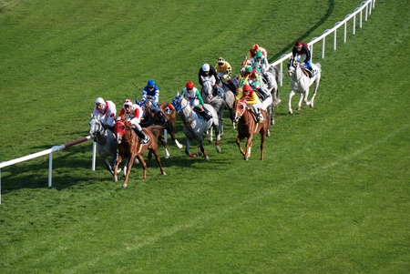 Horses and jockeys during a race. Editorial