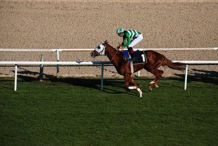 Ankara, Turkey - October 29, 2011 - October 29 Republic Day horse races at Hippodrome. Stock Photo - 13365370