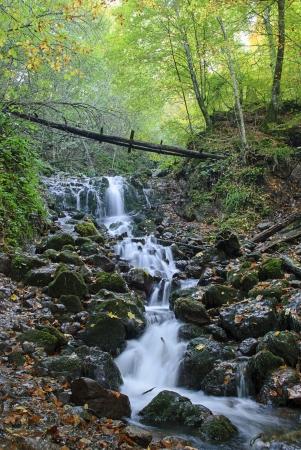 rill: Cascade at Yedigoller (Seven Lakes) National Park in Bolu, Turkey.