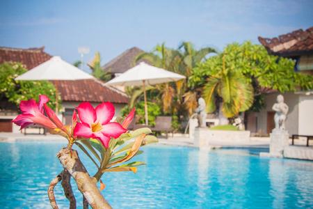 Beautiful hotel  pool in Bali, Indonesia