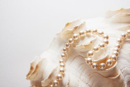 pearl shells with beads, teeth health Stock Photo