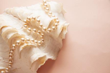 구슬, 치아 건강 진주 조개 스톡 콘텐츠