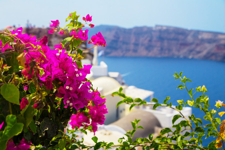 Beautiful views of santorini, Greek Resort