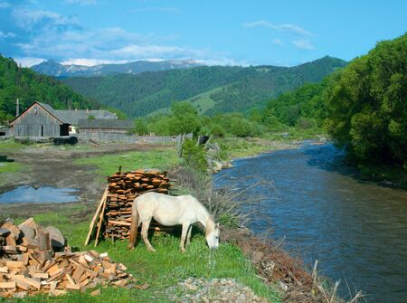 Eastern carpathians in Transylvania