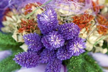 fiori secchi: Un bouquet colorato di fiori secchi