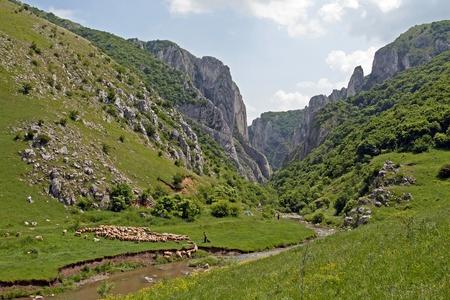 View of the famous canyon near Turda in Romania 免版税图像 - 13129175