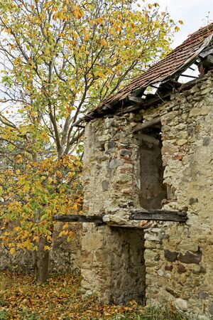 ruinous: An abandoned ruinous building in the forest Stock Photo