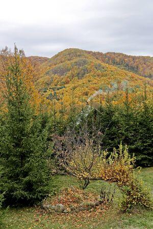 Autumn foliage in the mountains Stock Photo - 16959997