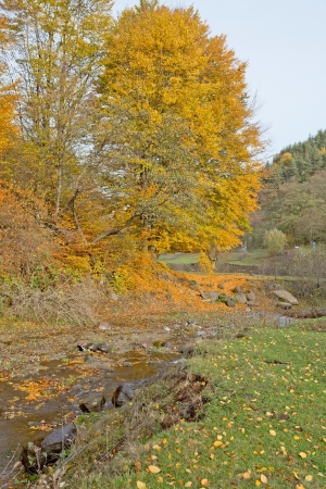 A valley with a little creek in autumn Stock Photo - 17211905