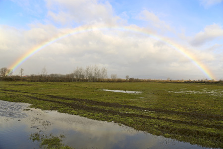 swampy: A rainbow above the swampy meadow Stock Photo