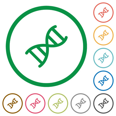 DNA molecule flat color icons in round outlines on white background