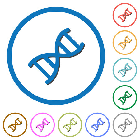DNA molecule flat color vector icons with shadows in round outlines on white background Illustration