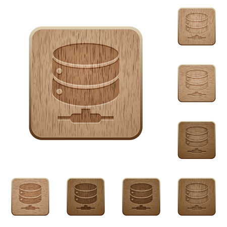 Network database on rounded square carved wooden button styles. Illustration