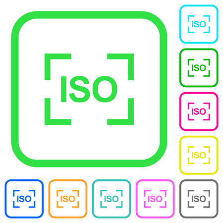 Camera iso speed setting vivid colored flat icons in curved borders on white background