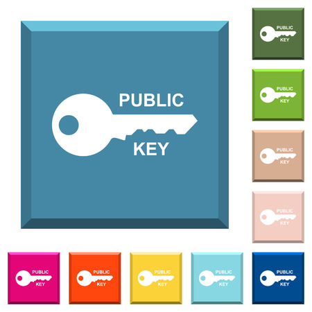 Public key white icons on edged square buttons in various trendy colors