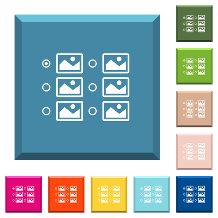 Single image selection with radio buttons white icons on edged square buttons in various trendy colors Illustration