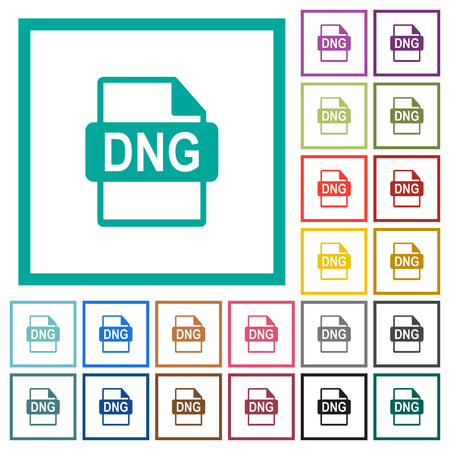 DNG file format flat color icons with quadrant frames on white background