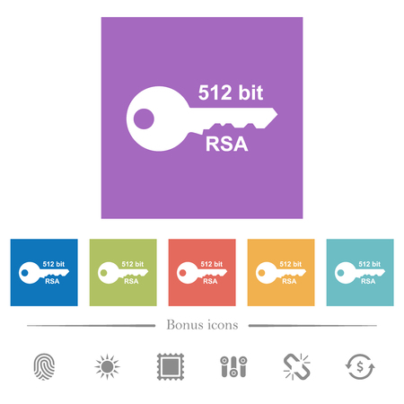 512 bit rsa encryption flat white icons in square backgrounds. 6 bonus icons included.