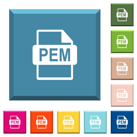 PEM file format white icons on edged square buttons in various trendy colors
