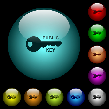 Public key icons in color illuminated spherical glass buttons on black background. Can be used to black or dark templates