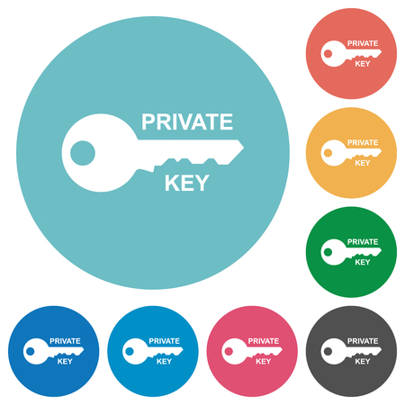 Private key flat white icons on round color backgrounds