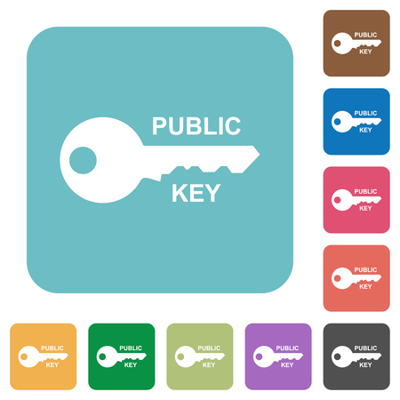 Public key white flat icons on color rounded square backgrounds