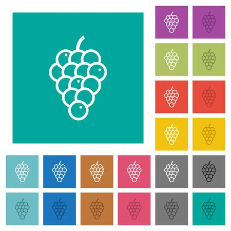 Grapes multi colored flat icons on plain square backgrounds. Included white and darker icon variations for hover or active effects.