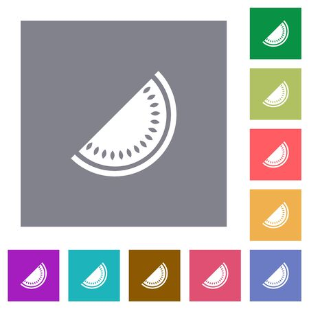 Slice of watermelon flat icons on simple color square backgrounds