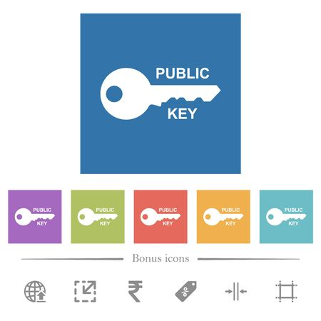 Public key flat white icons in square backgrounds. 6 bonus icons included.