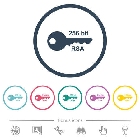 256 bit rsa encryption flat color icons in round outlines. 6 bonus icons included.