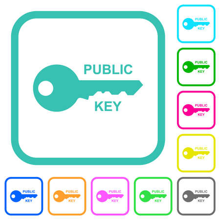 Public key vivid colored flat icons in curved borders on white background