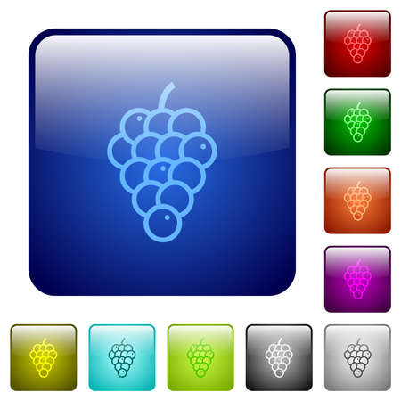 Grapes icons in rounded square color glossy button set