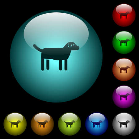 Dog icons in color illuminated spherical glass buttons on black background. Can be used to black or dark templates