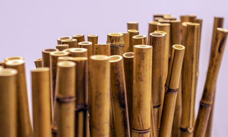 bamboo stems arranged in a row on an isolated background