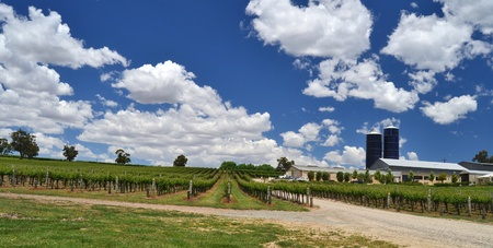 A winery in the Adelaide Hills, South Australia Stock Photo - 10634659
