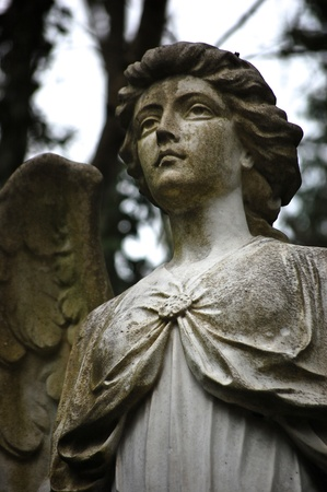 Angel statue in a graveyard at Highgate Cemetery, London photo